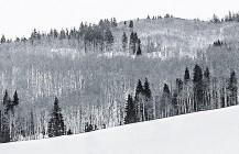 #Aspen #winterwonderland #Colorado #roadtrip
