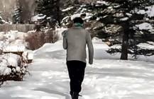 #winterbunny #winterwonderland #snow #Colorado #xmas #flu