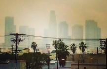 #la #losangelas #skylineporn #skylineview #downtownla #palmtrees #socal