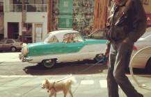 #dogwalking #sfaf #magnetsf #474castro #subcompact #vintagecar #metropolitancar #castro #sanfrancisco #bayarea #california #carribeanblue
