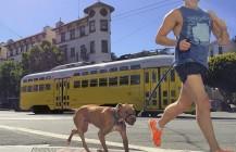 #haysquirrel #Dog #Runner #orangeshoes #running #dogrunning #nike #marketstreet #marketandnoe #castro #mysanfrancisco #sf #415 #bayarea #california #pixelstud