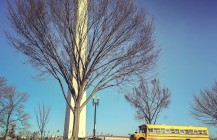 #fieldtrip #treeporn #winter #yellowschoolbus #washingtonmonument #washingtondcphotography #washingtondc #americanhistory #usa